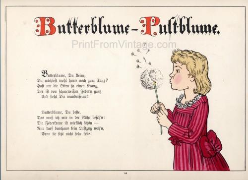 GermanPlantBook14